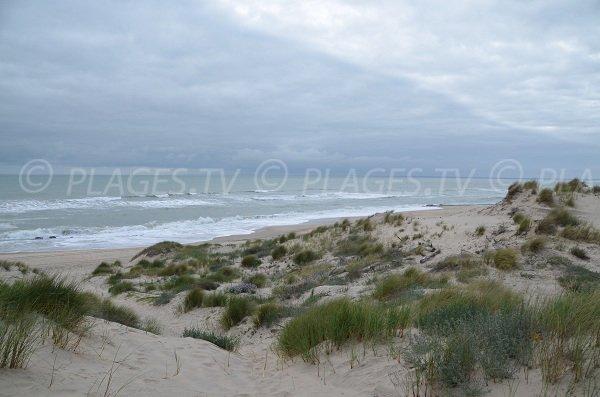 Plage Nord de Soulac sur Mer