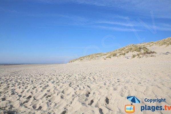 Dunes of Stella-Plage - France