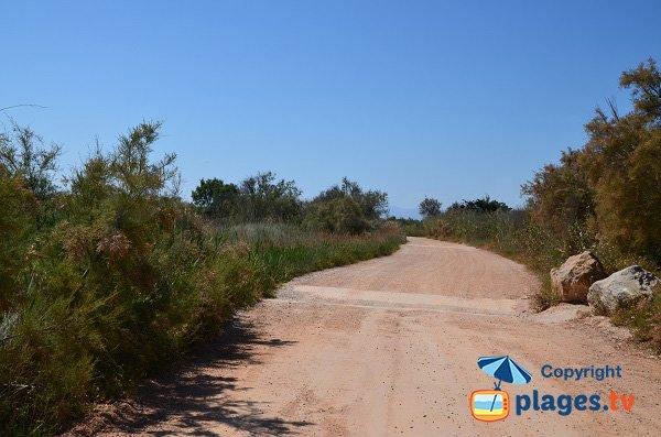 Route d'accès aux plages nord de Torreilles