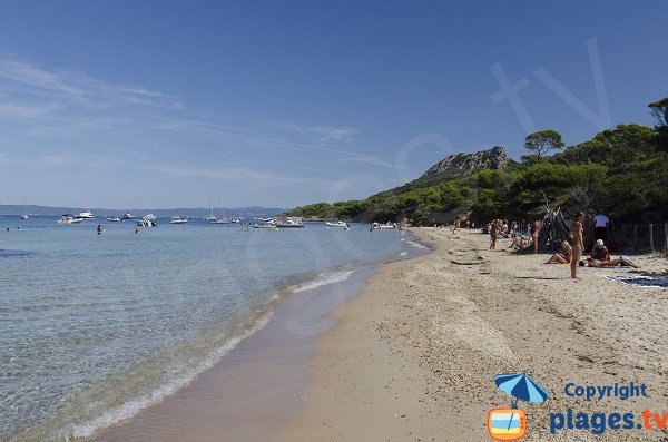 Photo of Notre Dame beach in Porquerolles in France