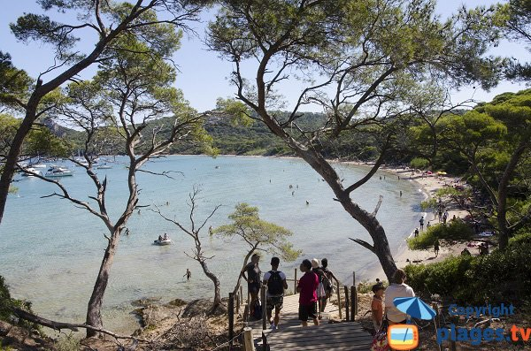 Notre Dame beach in Porquerolles Island in France