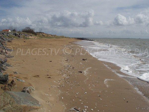 Dunes sur la plage de l'Oasis à l'Aiguillon sur Mer