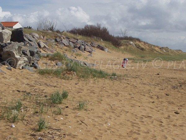 Dune à proximité de la Pointe de l'Aiguillon en Vendée
