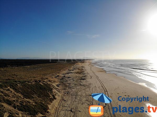 Dunes de la plage des Oceanides à Capbreton