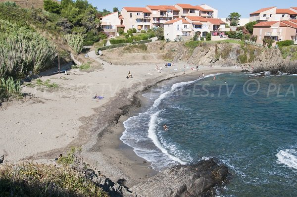 Huile beach in Collioure - France
