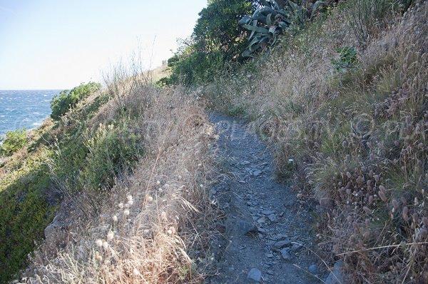 Chemin d'accès à la plage de l'Huile de Collioure