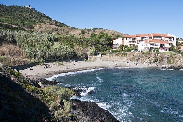 Plage d'Oli à Collioure