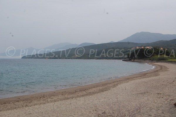 Plage d'Olzo à Saint Florent en Corse