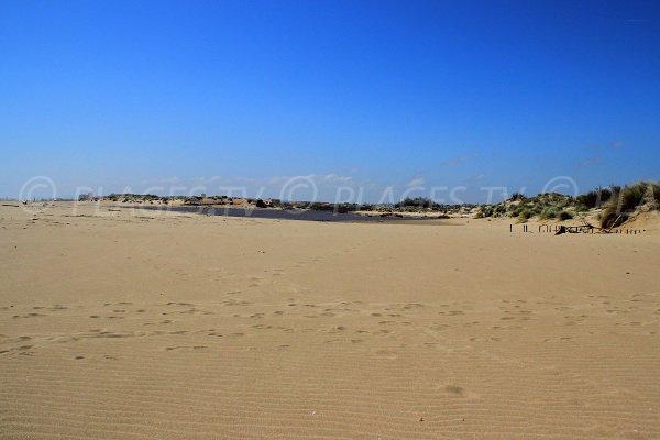 Orpellières beach in Sérignan near Valras