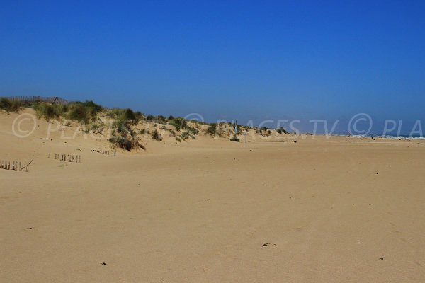 Plage les orpelli res s rignan 34 h rault languedoc - Office du tourisme valras plage herault ...