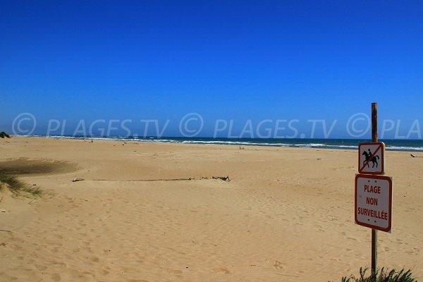 Wild beach in Sérignan - south of France
