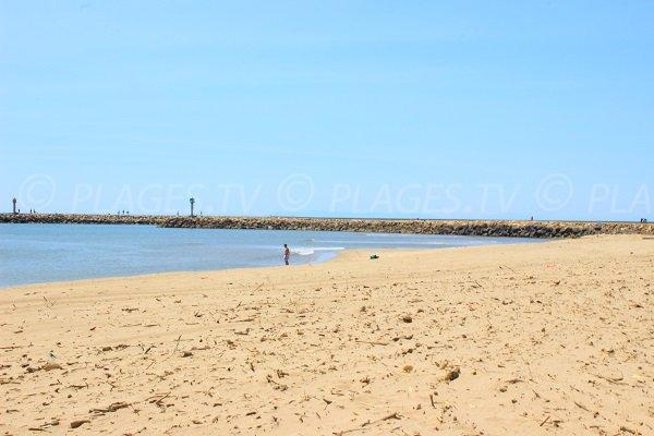 Port de Valras vue depuis la plage des Orpellières
