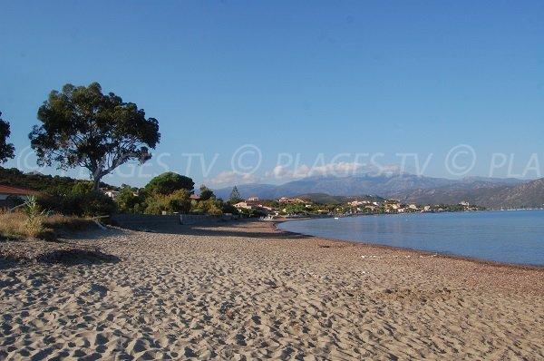 North beach of St Florent
