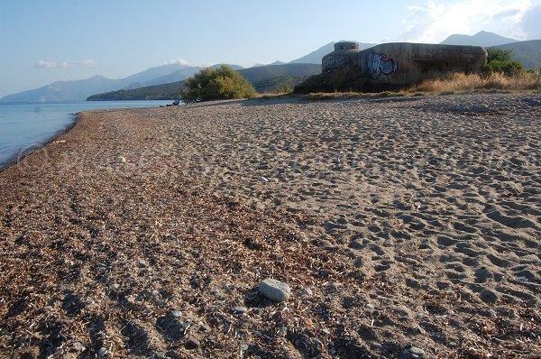 Sand beach - Ospedale - Saint Florent - Corsica