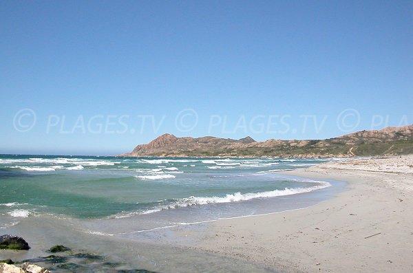 Plage de sable fin de l'Ostriconi en Corse
