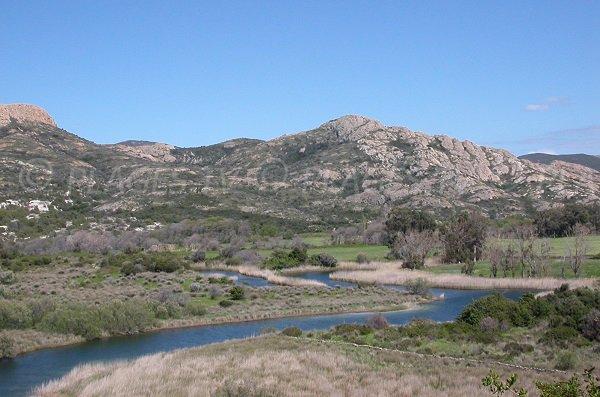 Zone marécageuse des Agriates - Ostriconi Corse