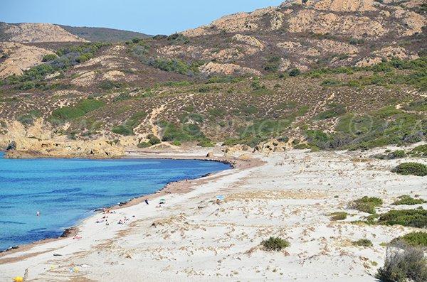 Dunes sur la plage de l'Ostriconi