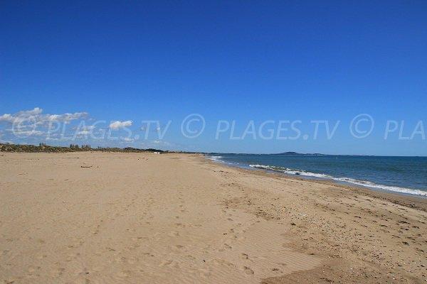 Spiaggia Ovest di Portiragnes in Francia