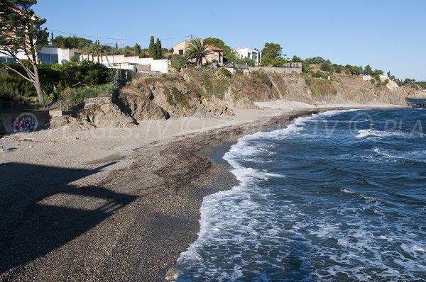 Plage de l'Ouille à Collioure