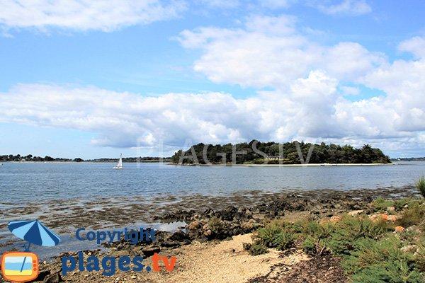 Ile de Stibiden - Golfe du Morbihan