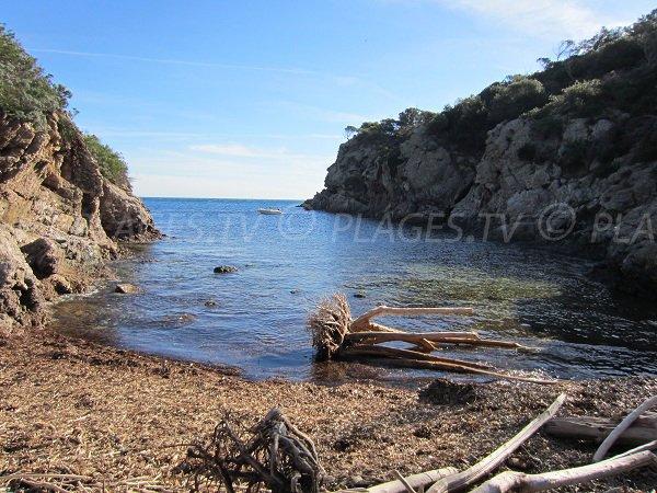 Spiaggia l'Oustaou de Diou a Porquerolles