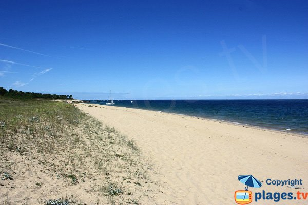 Photo de la plage des Ovaires sur l'ile d'Yeu