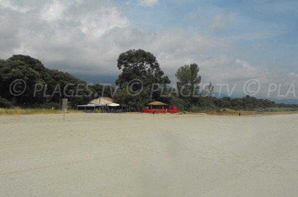 Paillote sur la plage de Cervione - entre Prunete et Padulone