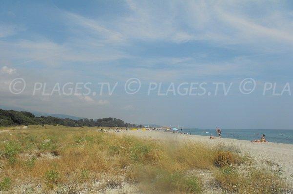 Spiaggia vicino Port Taverna