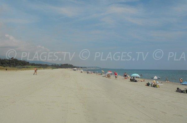 Spiaggia di Padulone a Cervione in Corsica