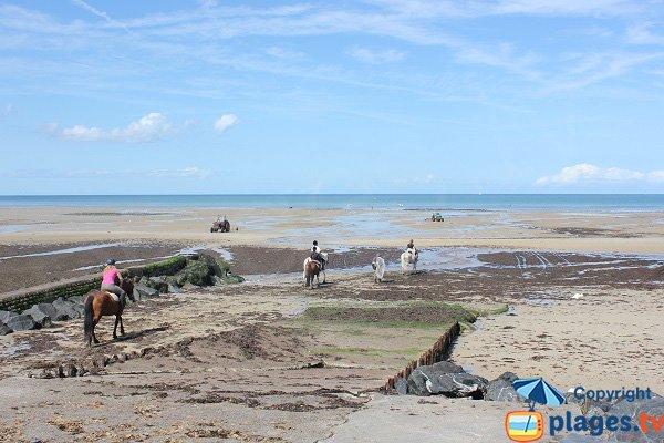 Plage du Paisty Vert à marée basse - Ver sur Mer