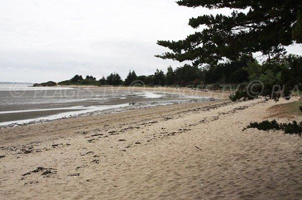 Plage de sable au sud de Pénestin
