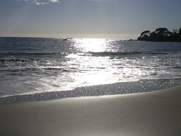 Plage de sable fin à Ajaccio