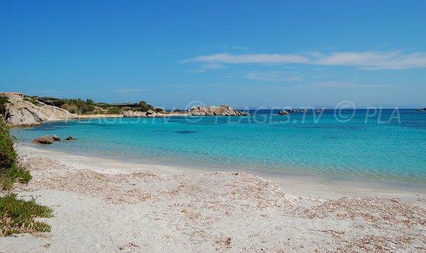 Beach east of Cavallo Island