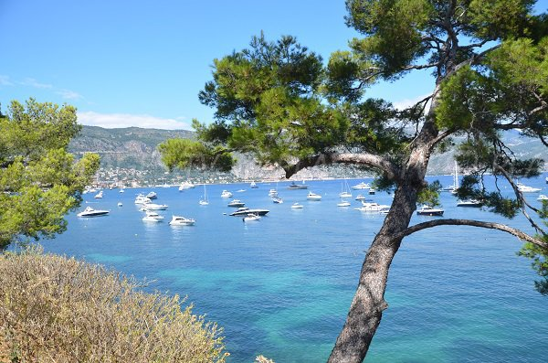 Paloma beach with view on Beaulieu sur Mer