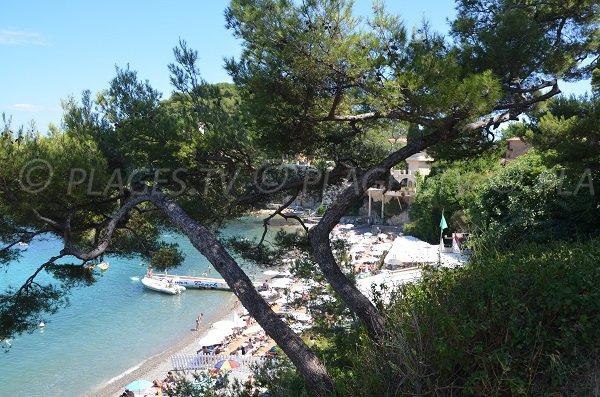Photo of the most beautiful beach in St Jean Cap Ferrat