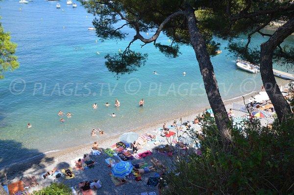Left part of Saint Jean Cap Ferrat beach - Paloma