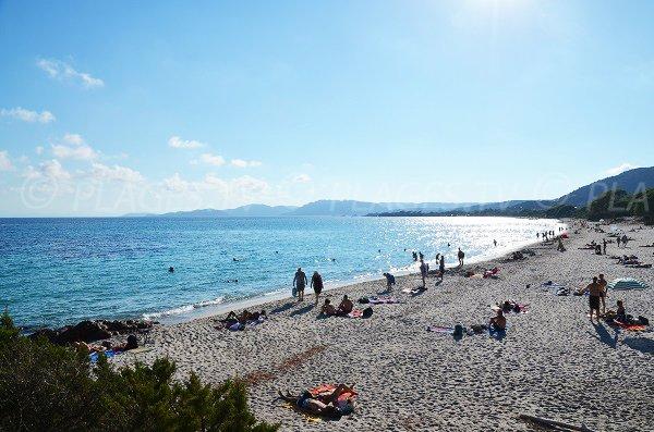 Palombaggia bay in Corsica