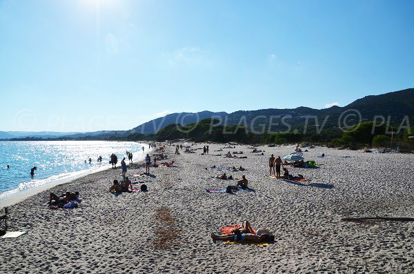Photo des plages de Palombaggia à Porto Vecchio