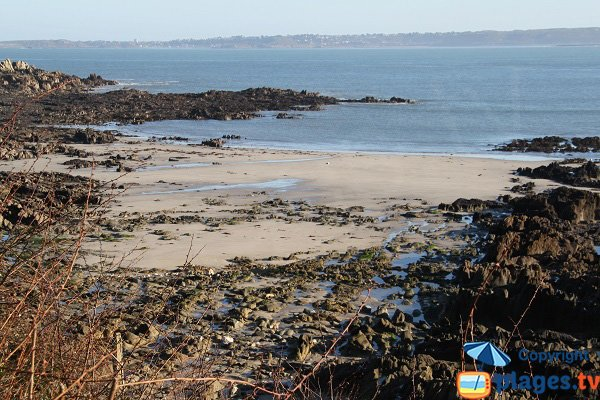 Photo de la plage du Palud de Locquirec