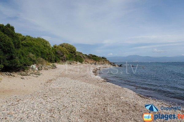 Photo de la plage de la Parata à Ajaccio