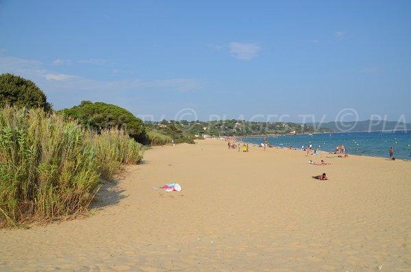 Environnement de la plage de Pardigon à Cavalaire sur Mer
