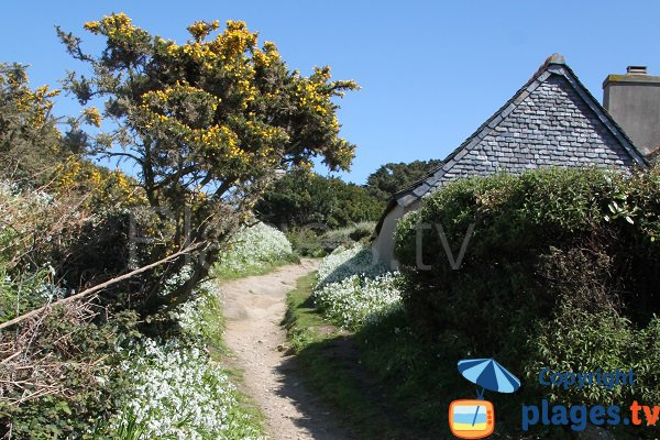 Path to the church from the beach of the island of Caillot