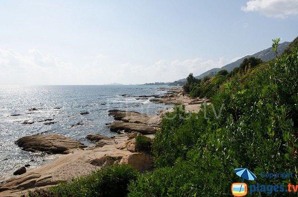 Foto spiaggia di Pasci Pecura - Ajaccio