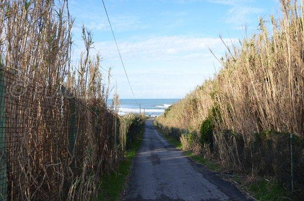 L'accesso della spiaggia Pavillon Royal - Bidart