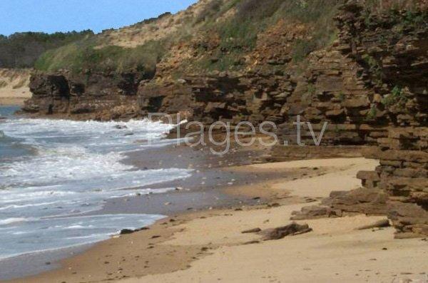 Crique de sable pointe de la Payré - Jard sur Mer