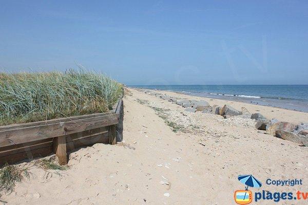 Dunes de la plage de Graye sur Mer - Brèche de la maison Pearson