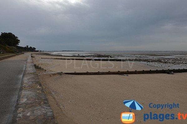 Promenade piétonne le long des plages de Les Moutiers en Retz