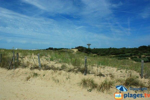 Environnement de la plage de la Pége - St Hilaire