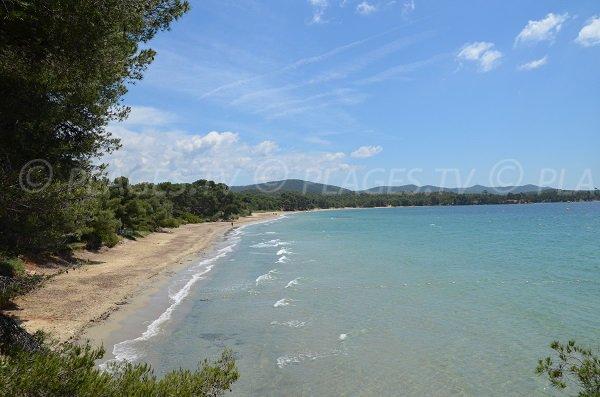 Vue générale de la plage du Pellegrin à Bormes les Mimosas