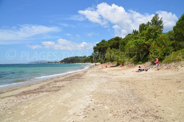 Pellegrin beach and view on the La Londe les Maures harbor
